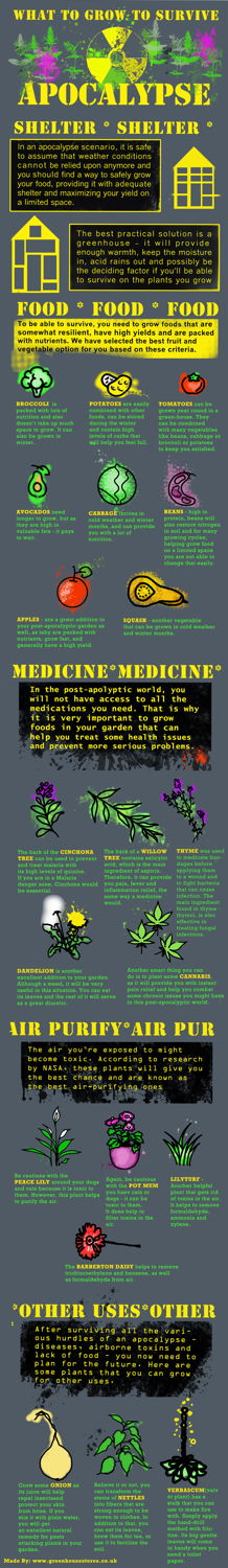 what to grow to survive the apocolypse infographic
