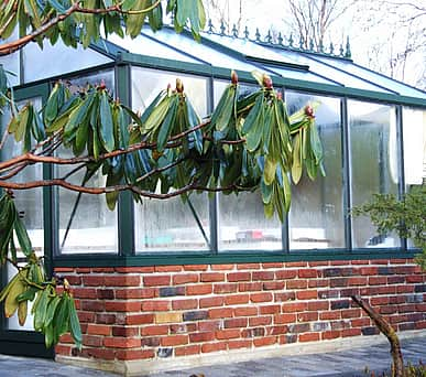10x19 Janssens Mur Dwarf Wall Greenhouse