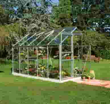 6x10 Halls Popular Greenhouse - Horticultural Glass