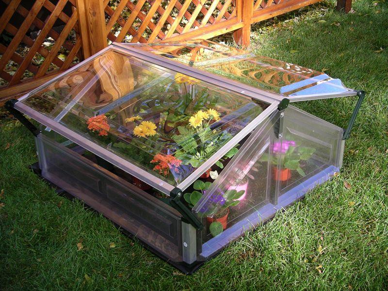 palram double cold frame greenhouse stores. Black Bedroom Furniture Sets. Home Design Ideas