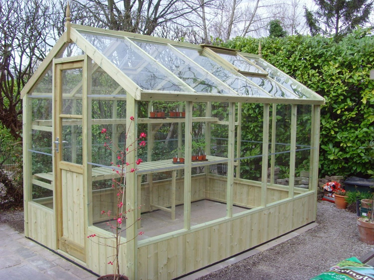 Swallow kingfisher 6x10 wooden greenhouse greenhouse stores for Green house plans with photos