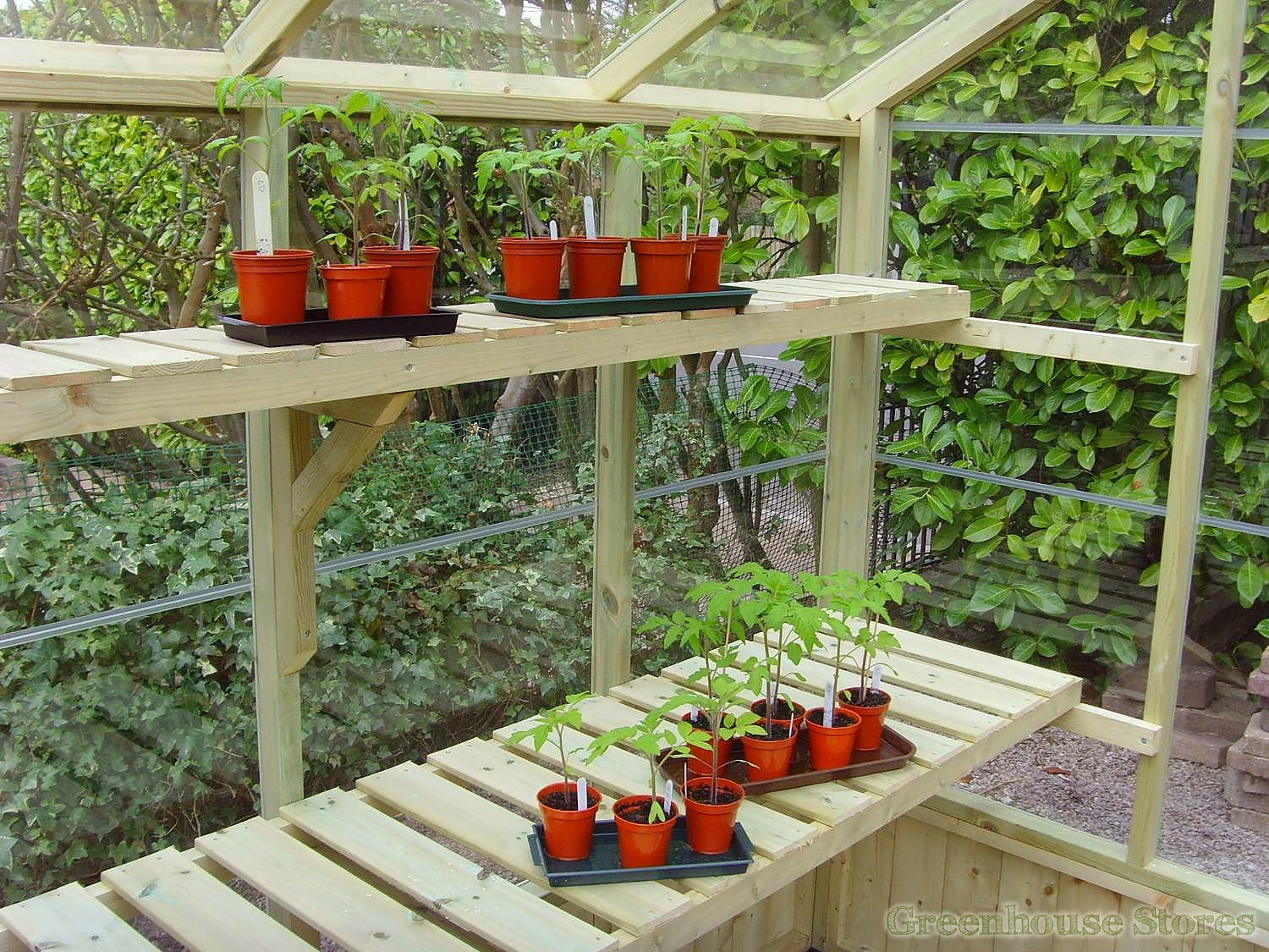 Swallow kingfisher 6x4 wooden greenhouse greenhouse stores - Wooden staging for greenhouse ...