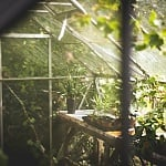 Taking Care of Your Greenhouse in Winter