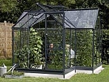 Eden-Orangery-Silver-Greenhouse-3mm-Toughened-Glazing