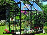 Eden-Countess-Black-5x6-Greenhouse-3mm-Toughened-Glazing