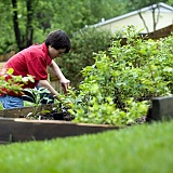 Why Are Young People Turning To Gardening?