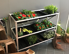 FREE Seed Tray Stand
