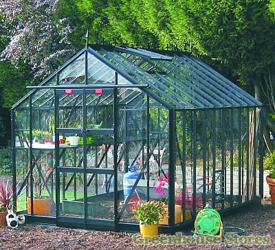 Elite Thyme 8x10 Greenhouse Toughened Greenhouse Stores