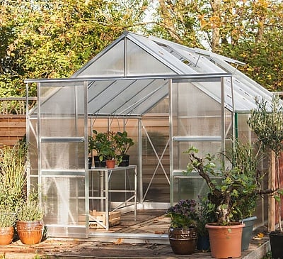 Eden Viscount Silver 8x12 Greenhouse - Toughened Glazing
