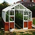 Elite Thyme 14x8 Dwarf Wall Greenhouse in White
