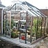 Elite Belmont 8x8 Greenhouse with Bar Capping