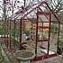 Elite High Eave 6x8 Greenhouse in Berry