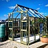 Olive Elite Titan 6x8 Greenhouse Toughened Glazing