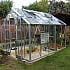Elite Belmont 8x10 Greenhouse with Partition