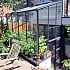 Elite Kensington 6x8 Lean to Greenhouse Custom