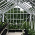 Elite Thyme 8ft Wide Greenhouse Interior