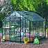 Elite Thyme 8ft wide greenhouse