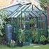 Elite Titan 6x6 Greenhouse in Green Powder Coating