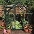 6x8 Green Halls Popular Greenhouse in Toughened Glass