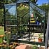 8x6 Green Halls Popular Greenhouse with Horticultural Glass