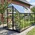 Halls Qube 6x10 Greenhouse Diagonal View