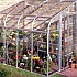Halls Silverline 8x6 Silver Lean to Greenhouse