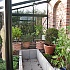 Janssens Arcadia Plus Mur Lean To Dwarf Wall Greenhouse Inside