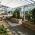 Janssens Arcadia Plus Mur Lean To Dwarf Wall Greenhouse Interior