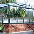 7x10 Green Janssens Mur Dwarf Wall Greenhouse