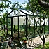 7x7 Black Janssens Mur Dwarf Wall Greenhouse