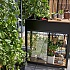 Juliana Vertical Greenhouse Cold Frame