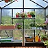 Palram 8x8 Glory Polycarbonate Greenhouse Interior