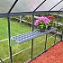 Palram Hybrid Polycarbonate Greenhouse Inside