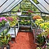 Palram Hybrid Polycarbonate Greenhouse Interior