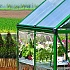 Palram Hybrid 6x4 Green Greenhouse Clear and Twin Wall Polycarbonate