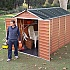 Palram 6x10 Plastic Skylight Garden Storage Shed in Amber