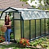 Rion EcoGrow 6x10 Greenhouse with Polycarbonate Glazing