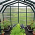 Rion Hobby Gardener 8x16 Greenhouse with Staging