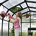 Rion Hobby Gardener 8x8 Greenhouse with Polycarbonate Glazing Roof Vent