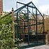 6x6 Vitavia Orion Greenhouse with Green Powder Coating
