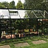 Green 6x12 Vitavia Venus Greenhouse in Toughened Glass