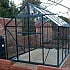 Vitavia Jupiter 8x10 Greenhouse