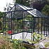 Vitavia Phoenix 8x10 Greenhouse in Green Powder Coating